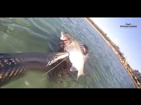 La pesca in Mongolia per guardare il video