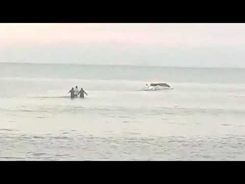 VIDEO Habría robado un auto, bajó a la playa en Punta Lara, se enterró y lo salvaron justito