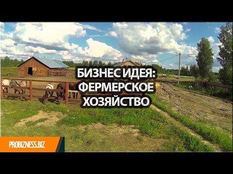 Бизнес идея организация фермерского хозяйства