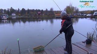 Рыбалка три пескаря в лыткино