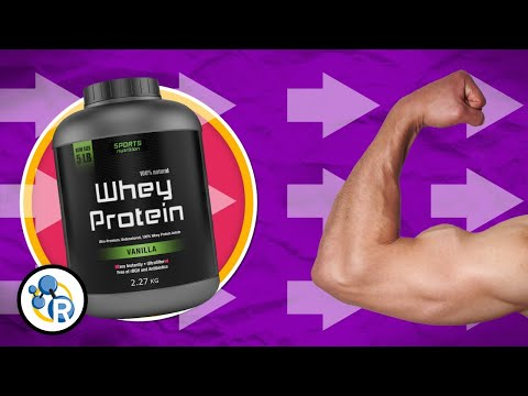 This Video Shows How Protein Builds Muscle