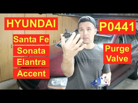 Hyundai Sonata EGR problem / EGR Valve replacement Hyundai