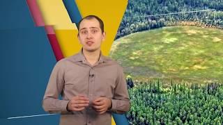 ФАКУЛЬТАТИВ Аномальные территории