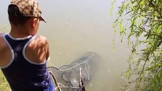 Рыбалка в дагестане на сома