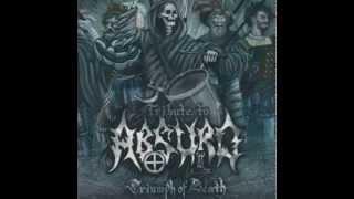 Volchiy Krest - Mourning soul (ABSURD cover)