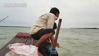Đi Câu Đêm ở Cửa Biển l Vừa Câu Vừa Lai Rai Trên Thuyền Thật Sướng