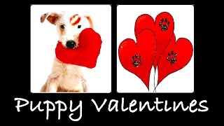 VALENTINES DAY PUPPY RECIPES - PANCAKES & SAVORY DIY Dog Food by Cooking For Dogs