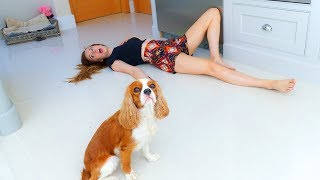 PETS REACT to us FAKING our DEATH! 🐶