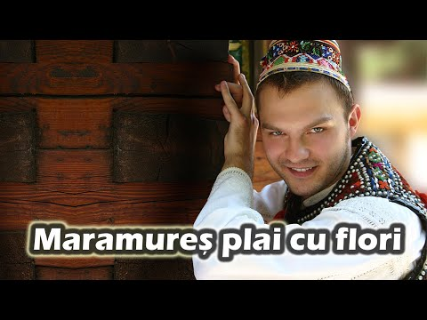 Ionica Morosanu – Maramures plai cu flori Video