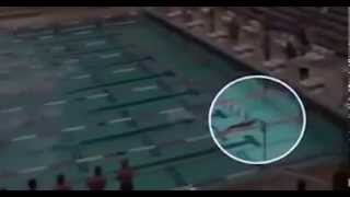 Not Swimmer Is A Fish So Fast What On Earth was that!!!