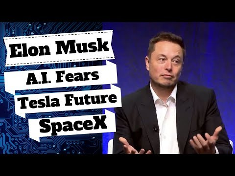 Elon Musk AI Concerns, Innovation In Autonomous Cars, SpaceX Travel & Solar City.
