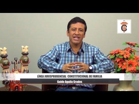 Línea Jurisprudencial Constitucional de Familia - Tribuna Constitucional 46