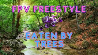 The good the bad the Ugly Fpv freestyle eaten by the Trees | Fpv Fails