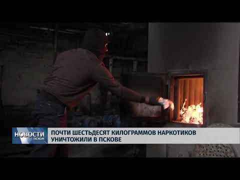 Новости Псков 14.09.2018 # Почти шестьдесят килограммов наркотиков уничтожили в Пскове