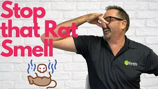 Get Rid of That Dead Rat Smell