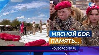 Останки 323-х красноармейцев с почестями предали земле в Мясном Бору