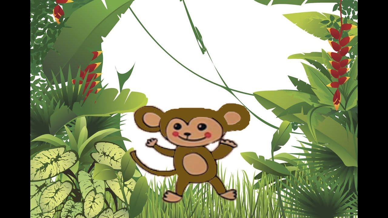 Cómo dibujar un mono. Aprende a dibujar animales de la selva