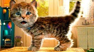 ПРИКЛЮЧЕНИЕ МАЛЕНЬКОГО КОТЕНКА в День Рождение! Кид играет в Little Kitten Adventures на пурумчата
