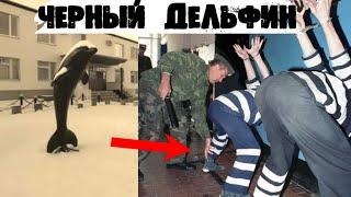 Черный Дельфин, это настоящий ад на земле. Самое страшное место в  России и одно из ужаснейших мест в мире. Истории на ночь, которые  рассказывают об этом месте, пугают даже самых заядлых любителей ужасов.  Но лучше рассказывать
