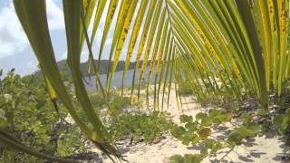 preview picture of video 'Carriacou (Sandy Island)'