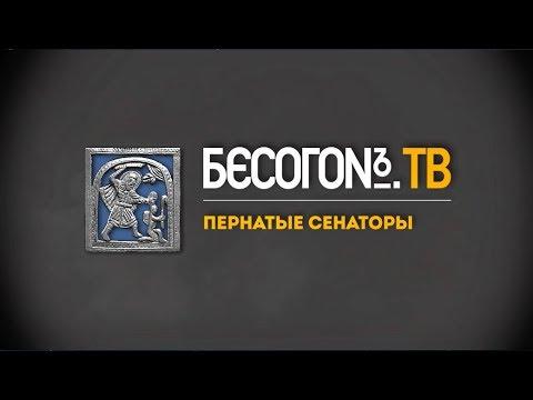 БесогонTV «Пернатые сенаторы»