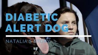 Diabetic Alert Dog: Natalia's Story