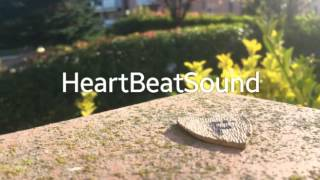 forever young(chantal Desiree cover)(Heartbeatsound remix)