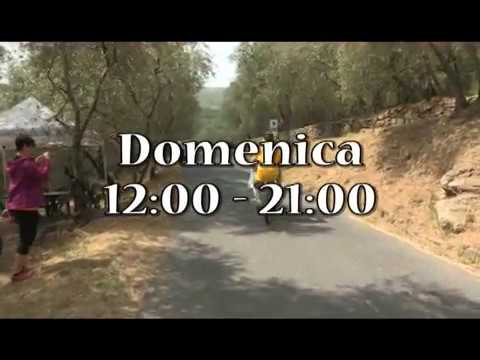 """DOMENICA ALLE 12 E IN REPLICA ALLE 21, SU IMPERIA TV LO SPECIALE """"OLIVETI APERTI"""""""