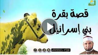 قصة بقرة بني اسرائيل | وقفات مع سورة البقرة  | مع فضيلة الشيخ أحمد الصباغ