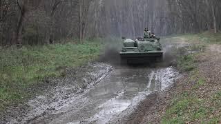 Video Panzer rollen wieder durch die Döberitzer Heide – aber für den Naturschutz (2)