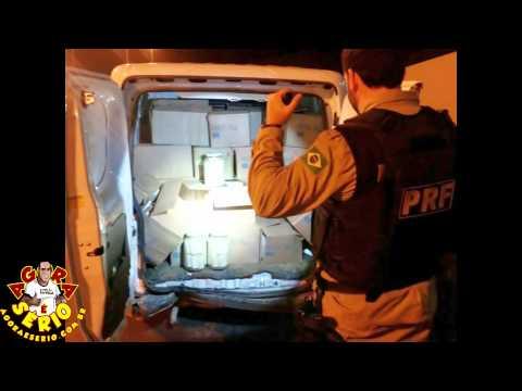 PRFs apreendem palmito contrabandeado