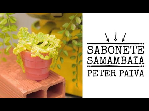 Sab. Vasinho de Samambaia