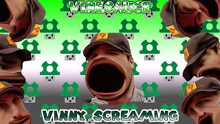 VINESAUCE VINNY SCREAMING