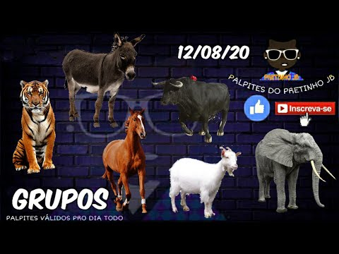 PALPITES DO PRETINHO JB 12/08/2020