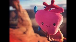 Body Parts Plush Organs - Nerdbugs