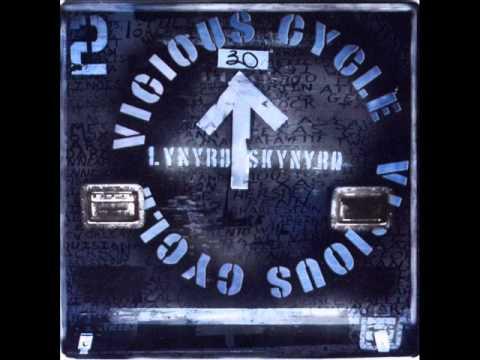 Lynyrd Skynyrd - Red White And Blue.wmv