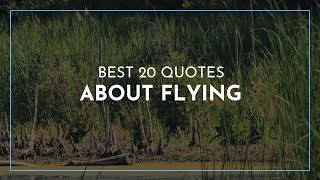 Best 20 Quotes About Flying / Famous Quotes / Feminist Quotes / Beautiful Quotes