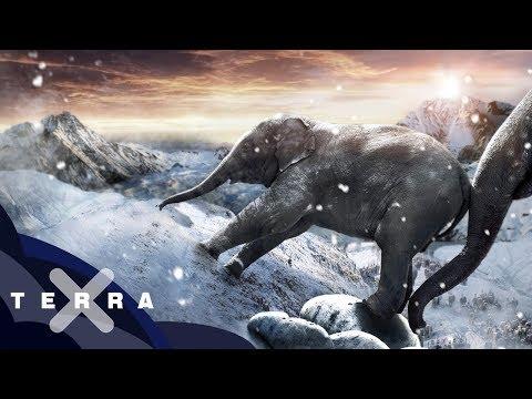 Jak přešli Hannibalovi sloni Alpy?