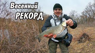 Ловля голавля весной на малых реках в марте