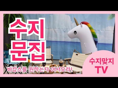 수지맞지 TV(2021.7.)