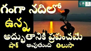 గంగ నీటిలో ఏముందో తెలిస్తే షాక్ అవ్వక తప్పదుShocking And Unbelievable Scientific Facts About Ganga-