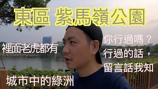 mqdefault - 【香港人在中山】中山 東區 紫馬嶺公園  東區中的城市綠洲 你行過未? 今次帶你先行遊歷|中山|大灣區|東區|CHINA |ZHONGSHAN