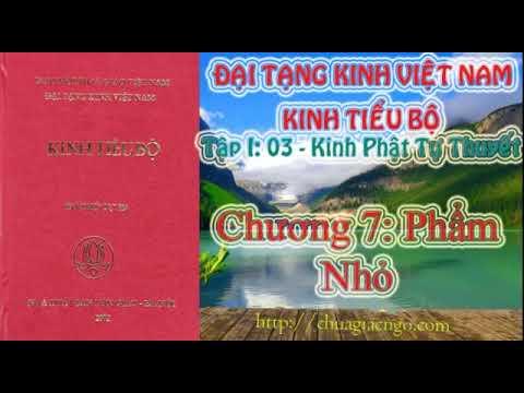 Kinh Tiểu Bộ - 044. Kinh Phật Tự Thuyết - Chương 7: Phẩm Nhỏ