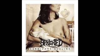 Benighted - Meticulous Invagination (Aborted Cover)