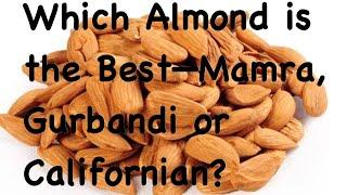 Which Almond Is The Best—Mamra, Gurbandi Or Californian?/कौन सा बादाम सेहत के लिए अच्छा है?