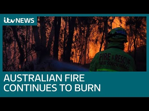 Firefighters take on Australian wildfires | ITV News