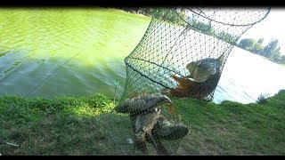 Рыбалка в крыму на карпа 2019