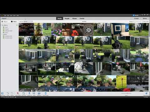 Photoshop Elements 2021 Tutorial Creating a New Catalog Adobe ...