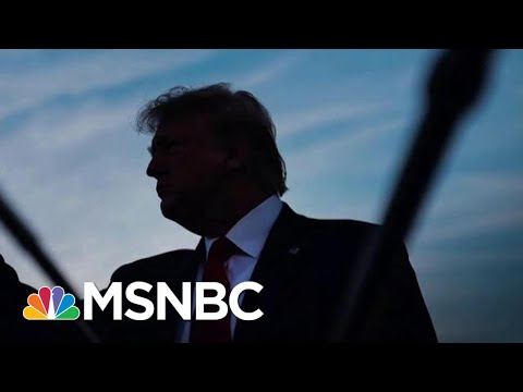 Why Amb. Taylor's UA Testimony May Be Pivotal To Trump's Future As President | The 11th Hour | MSNBC