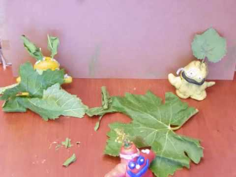 Video of student projects from my Claymation Class at the Atascadero Colony Park Community Center. (Summer 2010)